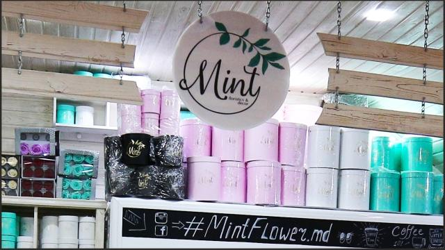 Mint - Floristics & Decor